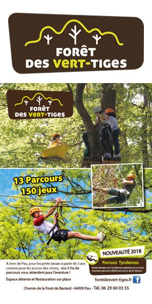 Forêt des vert tiges