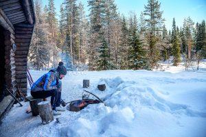 Laponie-sauvage-AdobeStock_302180452-300x200